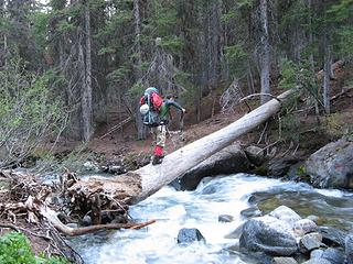 Going backup the Ingalls Creek log