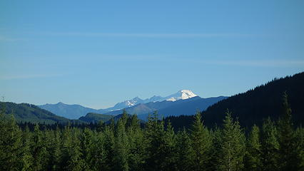 Mount Baker from clearcut on Suiattle River Road