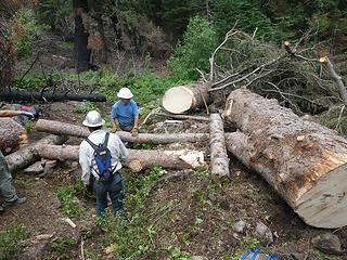 18. Log all the way across and near final resting position