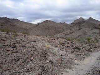 Trail 300
