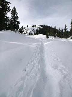 On the trail to Mt. McCausland 11/12/18