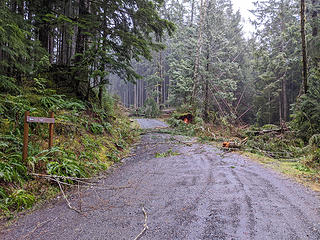 The CCC trail connection has trees down. It will turn out worse as I go farther.  Map: location 2
