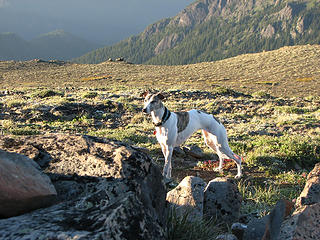 Kiefer on slopes of Baldy