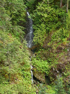 Waterfall visible from the trail along the Wynoochee side
