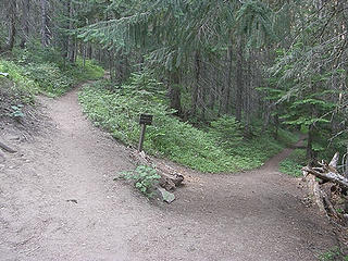 Fork in the trail. Right goes to Crystal Peak, straight continues to Crystal Lakes. Right it is.
