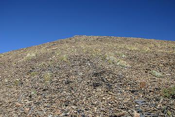 stark tundra of Moose Mountain