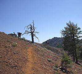 Hikers on Koppen Mt trail
