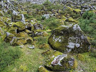 More mossy rocks