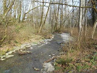 Swan Creek Park 022120 01