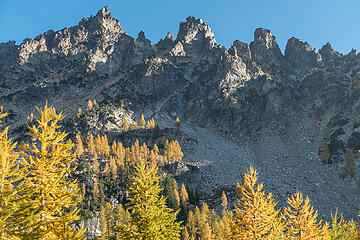 high larches on emerald