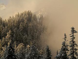 Kyes, trees & fog