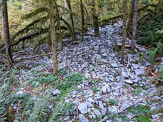 A fresh gravel run came down last winter and partially covered the RR grade