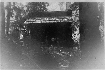 Spruce Bottom Shelter - Queets Valley - 1953 - photo John Dewitt Kirk Jr.