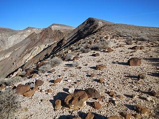 southeast ridge of Towne