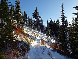 Heading back up to Freezeout Ridge. It's an almost 400' climb up from the 5620' saddle and trail low point.