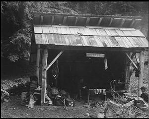 Tshletshy Creek Shelter - Queets Valley - June 1953 - photo courtesy Russ Dalton - NPS photo