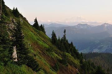 DSD_2614 Kendall Peak's palette of greens