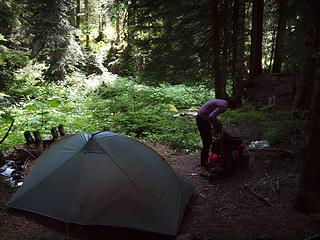 a fine campsite near 3400'