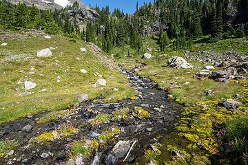 Crater creek headwaters