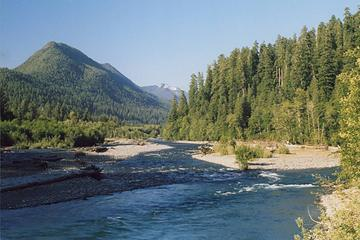 quinault-river-from-high-bridge-0706