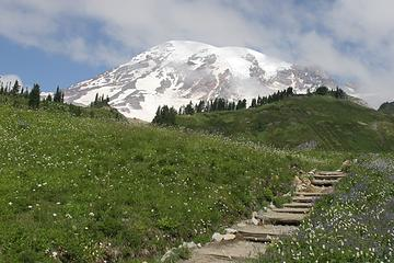 Mt Rainier - Edith Creek Trail