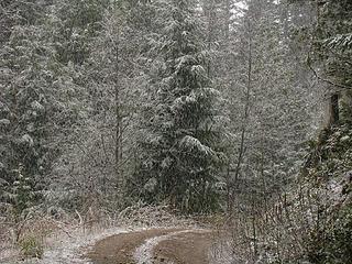 Fresh Snow 4-18-11