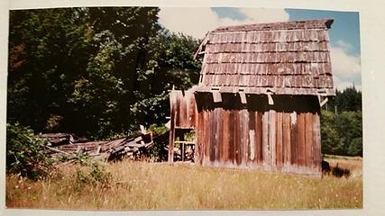 Andrews Barn - Queets Valley - mid-late-1980s - photo courtesy V. Heemstra