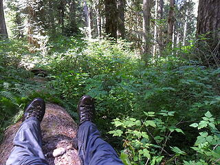 taking a break, on blowdown, with completely soaked trousers.