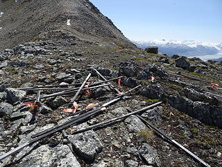 Prospecting posts--there is supposedly an active mine at the bottom of the western slope of Glacier View Peak