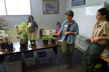 King County Weed Watcher training