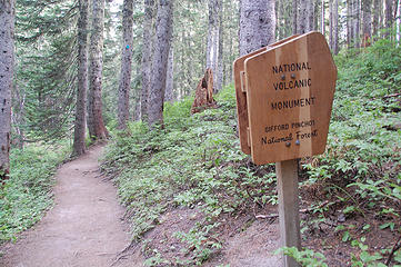 Forested trail, NVM - GPNF