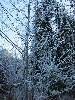 Boulder River December 9th 069