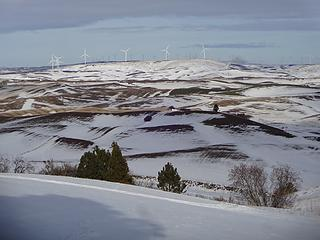 Whitman County windmills.