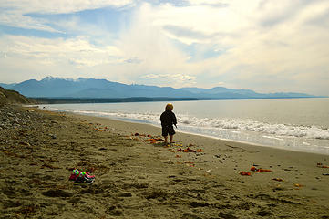 Caleb collecting beach artifacts