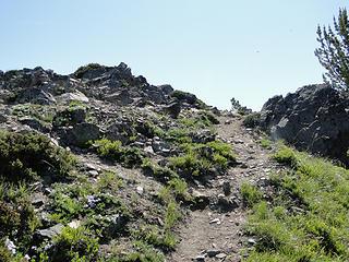 Trail up final bit to actual Crystal Peak summit.