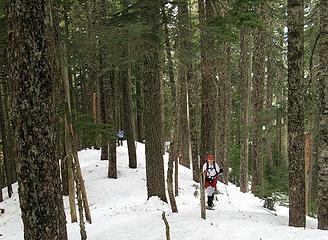 Running the ridge – Quark & Putz