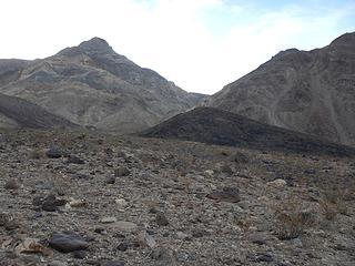 chosen ridge left of Lucky Rich Canyon