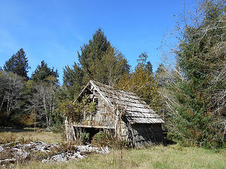 George Anderson homestead barn Queets Valley Olympic National Park Oct 2018 03