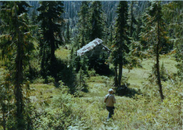 Approaching shelter 1985