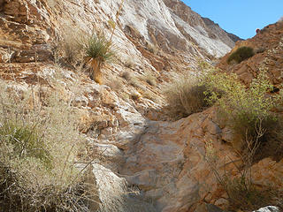 small gully at the base of the white marble wall