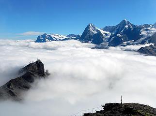 Birg Poking Through Clouds