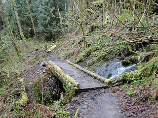 Bridge on Tiger Mountain trail.