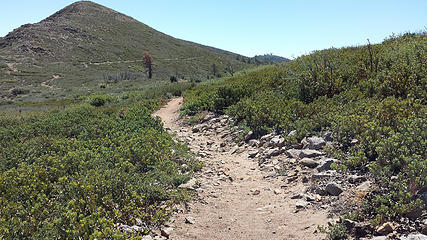 Back on the PCT