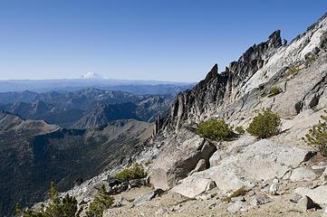 Views of Rainier from 8200' pass