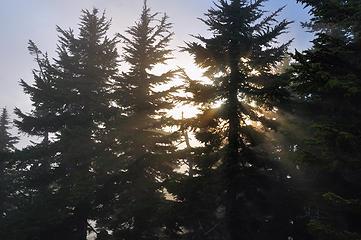 DSD_1731 - 38 seconds of summit sun