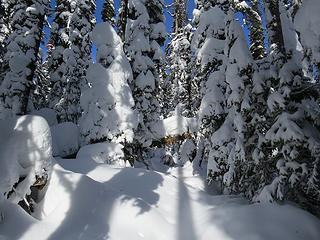 No more Squilchuck Trail, but stunning backcountry snowscapes.