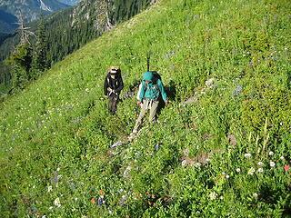 the boys traversing the meadows