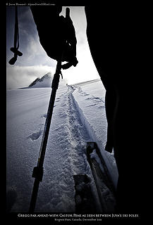A ski pole perspective