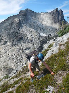 heather slopes on south face of Lynch