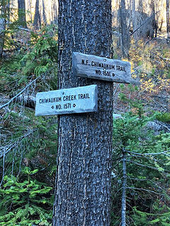The north fork trail goes to Chiwaukum and Larch Lakes while 1571 goes to Ladies pass
